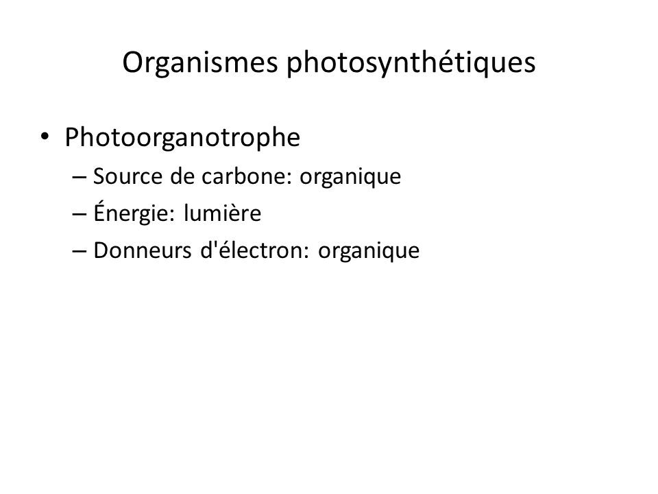 Organismes photosynthétiques