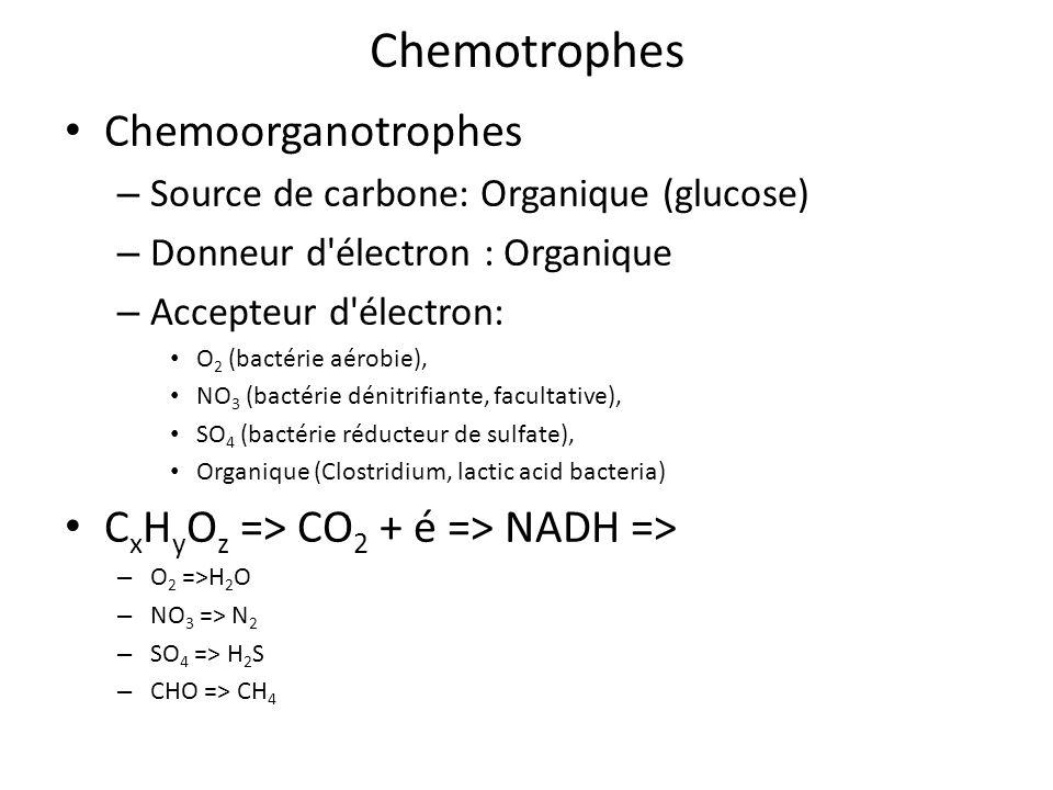 Chemotrophes Chemoorganotrophes CxHyOz => CO2 + é => NADH =>