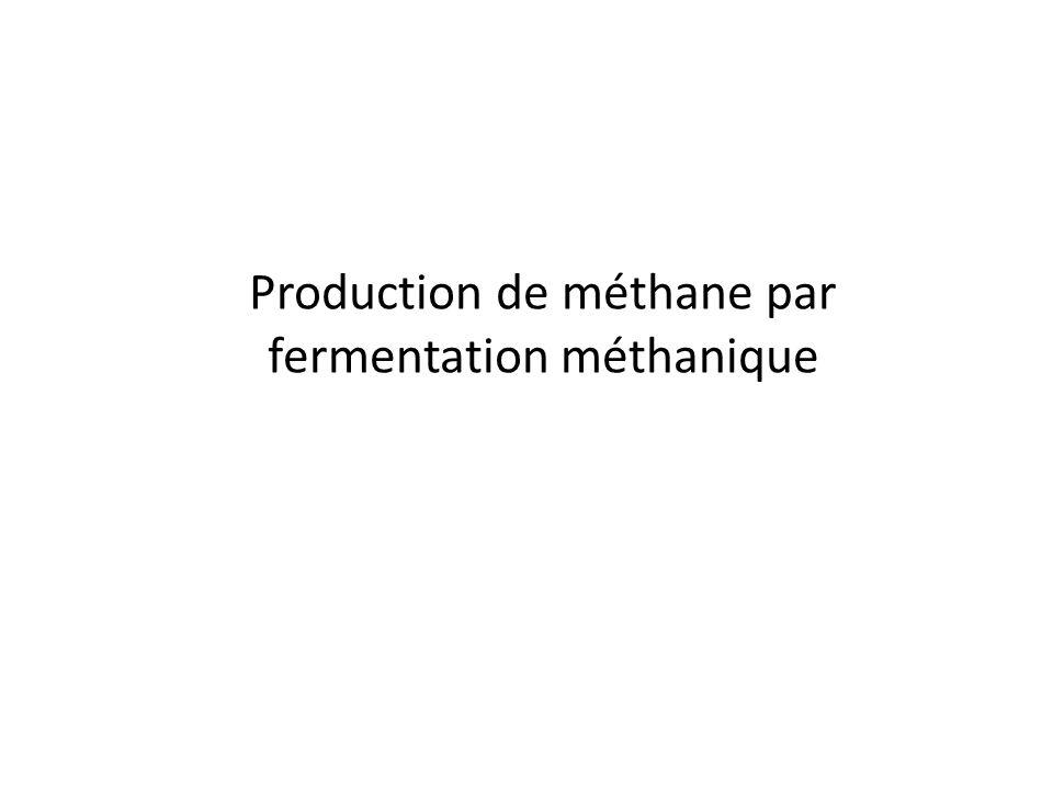 Production de méthane par fermentation méthanique