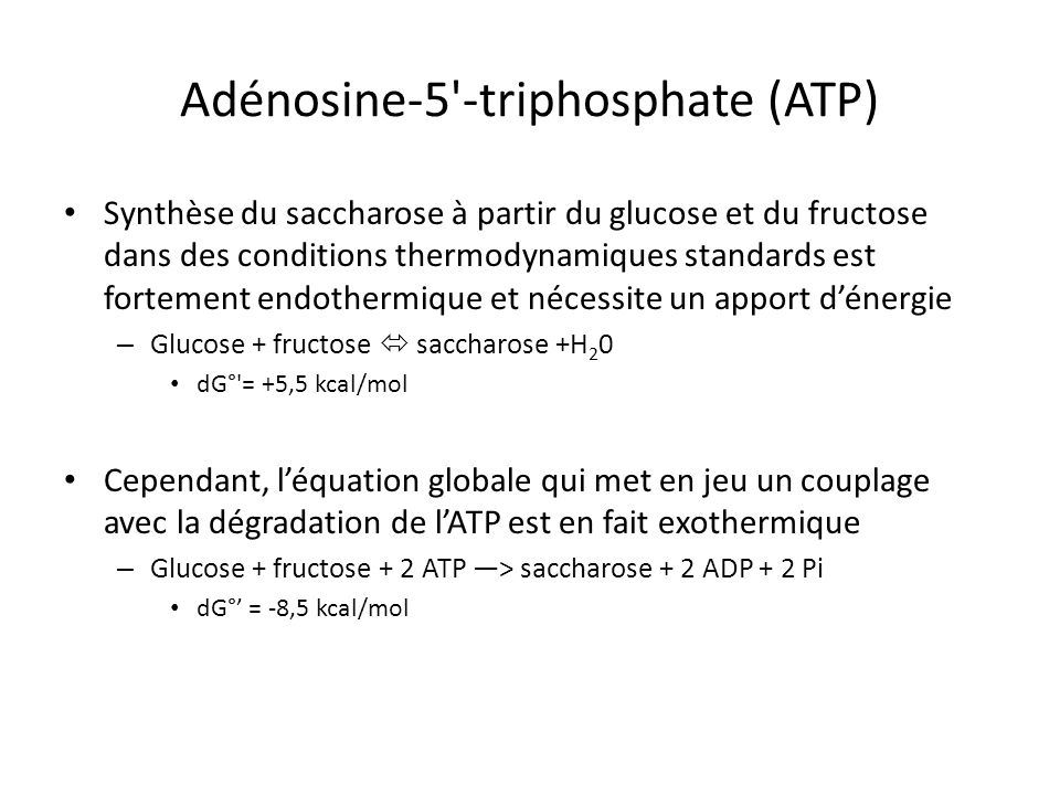Adénosine-5 -triphosphate (ATP)