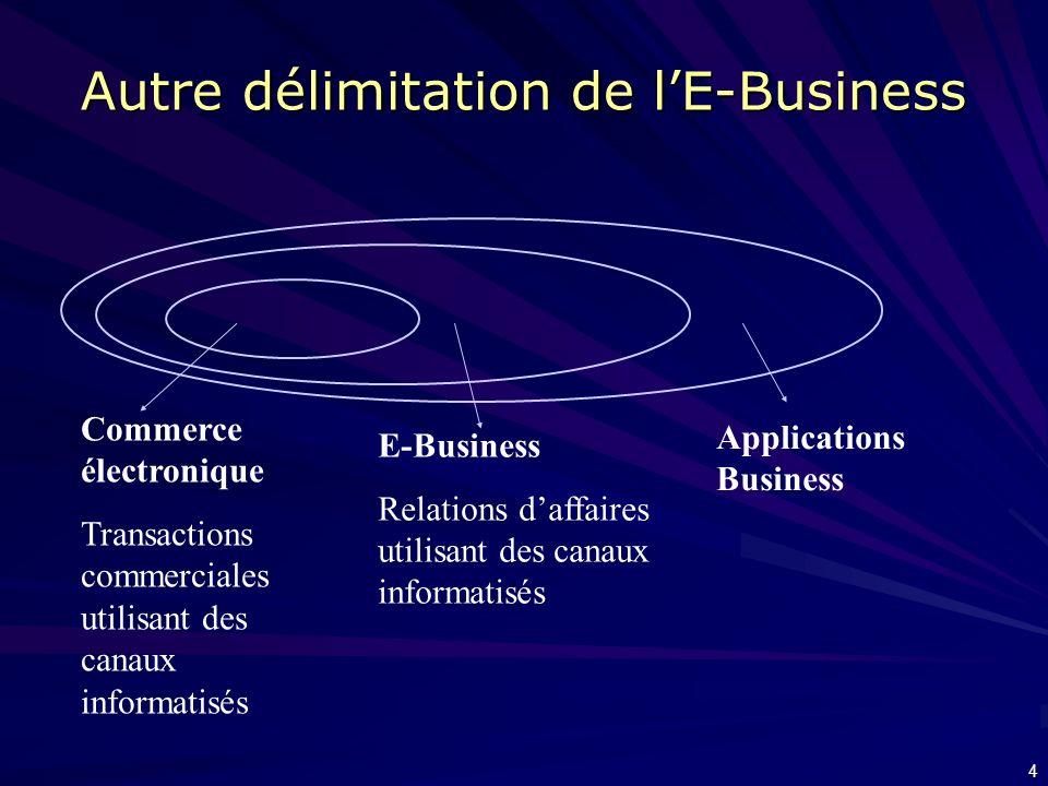 Autre délimitation de l'E-Business