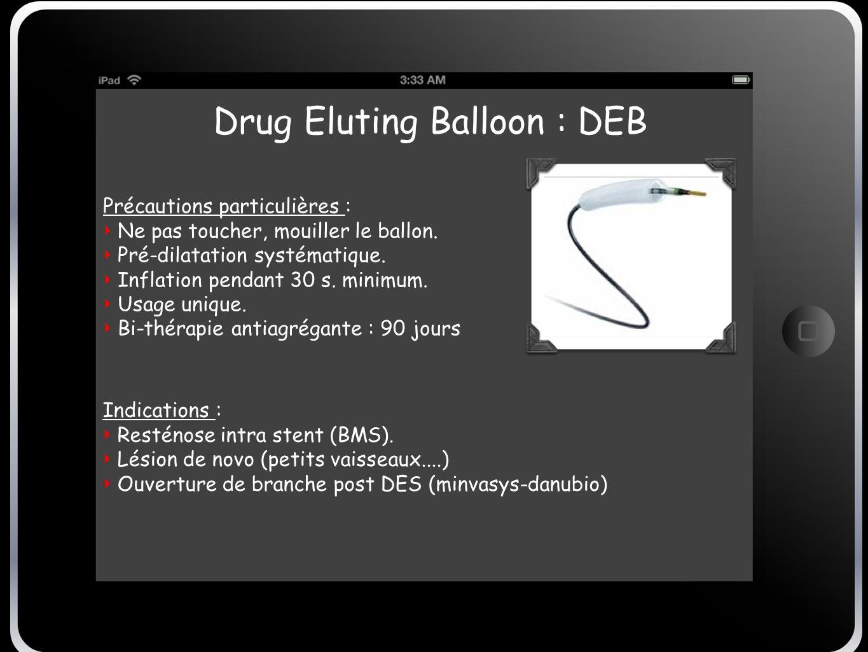 Drug Eluting Balloon : DEB
