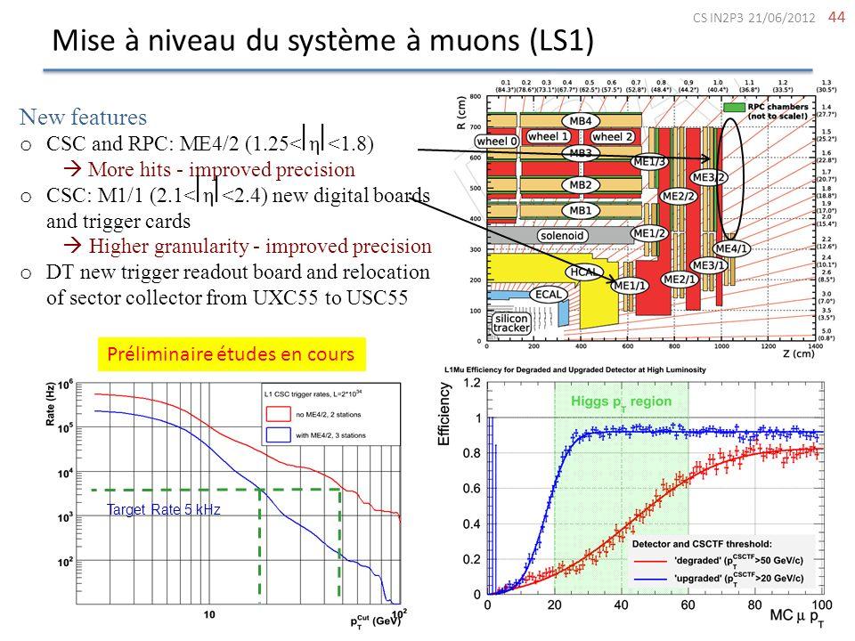 Mise à niveau du système à muons (LS1)