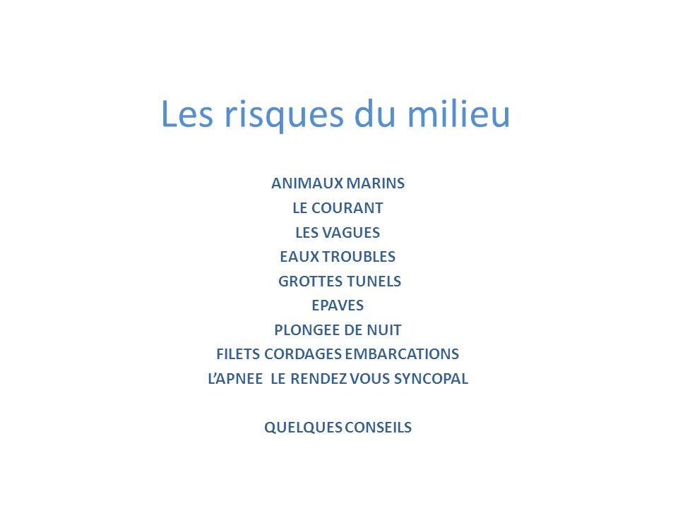 FILETS CORDAGES EMBARCATIONS L'APNEE LE RENDEZ VOUS SYNCOPAL