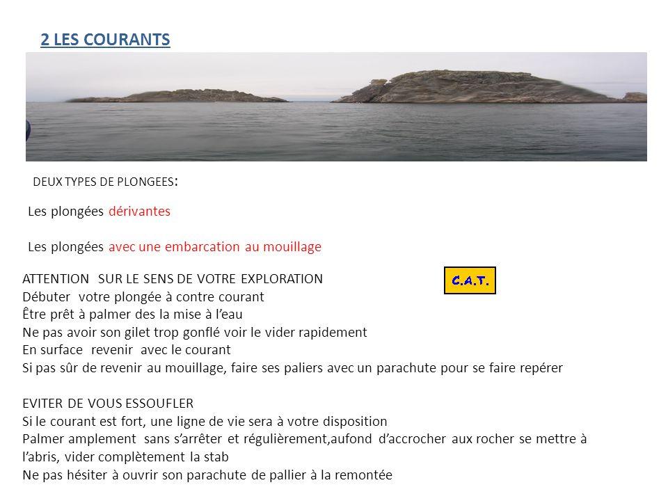 2 LES COURANTS Les plongées dérivantes