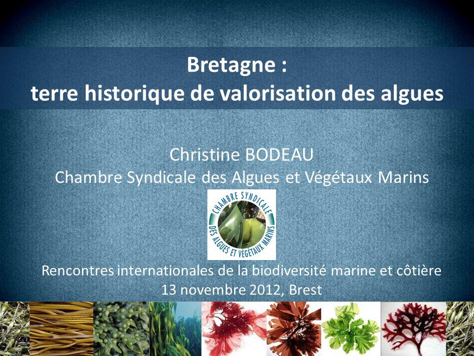 terre historique de valorisation des algues
