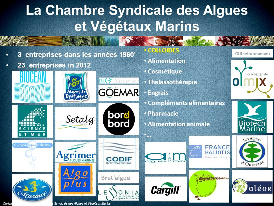 La Chambre Syndicale des Algues