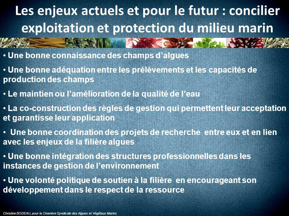 Christine BODEAU, pour la Chambre Syndicale des Algues et Végétaux Marins
