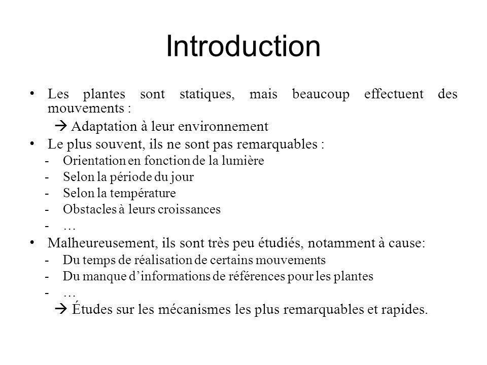 Introduction Les plantes sont statiques, mais beaucoup effectuent des mouvements :  Adaptation à leur environnement.