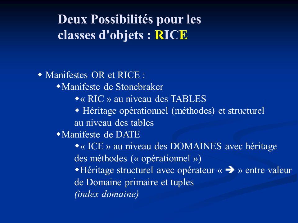 Deux Possibilités pour les classes d objets : RICE