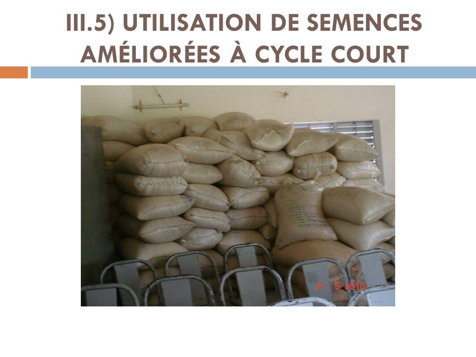 III.5) UTILISATION DE SEMENCES AMÉLIORÉES À CYCLE COURT