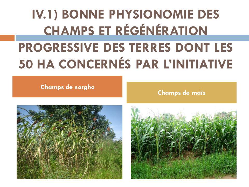 IV.1) BONNE PHYSIONOMIE DES CHAMPS ET RÉGÉNÉRATION PROGRESSIVE DES TERRES DONT LES 50 HA CONCERNÉS PAR L'INITIATIVE