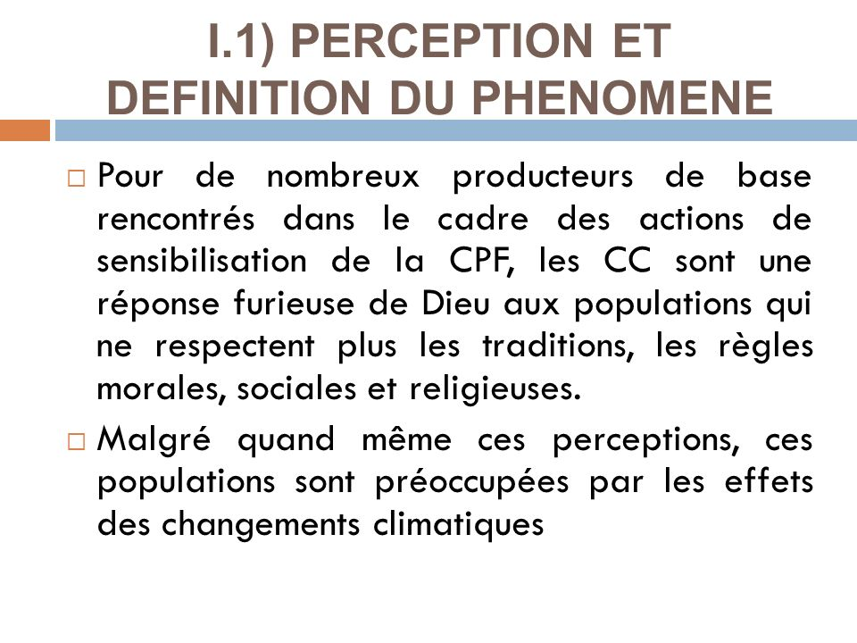 I.1) PERCEPTION ET DEFINITION DU PHENOMENE
