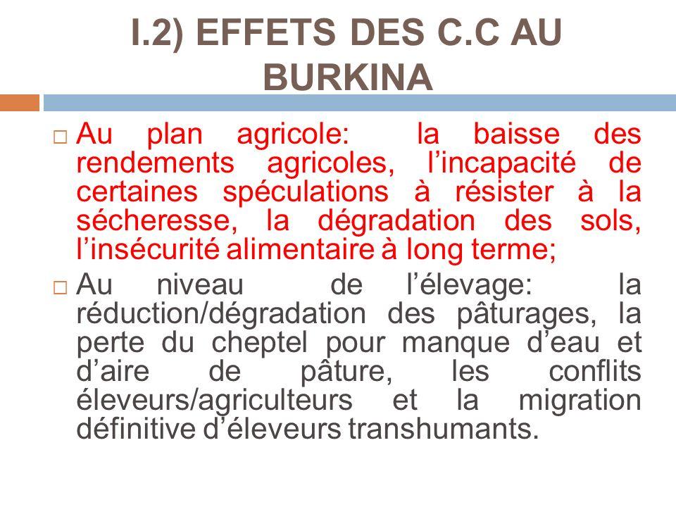 I.2) EFFETS DES C.C AU BURKINA