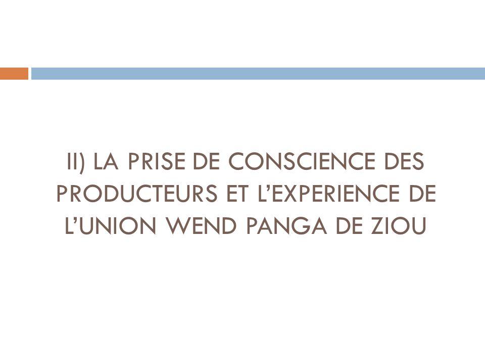 II) LA PRISE DE CONSCIENCE DES PRODUCTEURS ET L'EXPERIENCE DE L'UNION WEND PANGA DE ZIOU