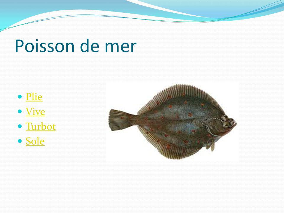 Poisson de mer Plie Vive Turbot Sole