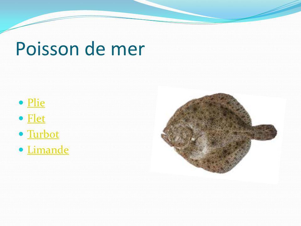 Poisson de mer Plie Flet Turbot Limande
