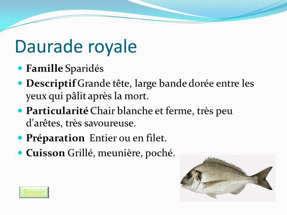 Daurade royale Famille Sparidés