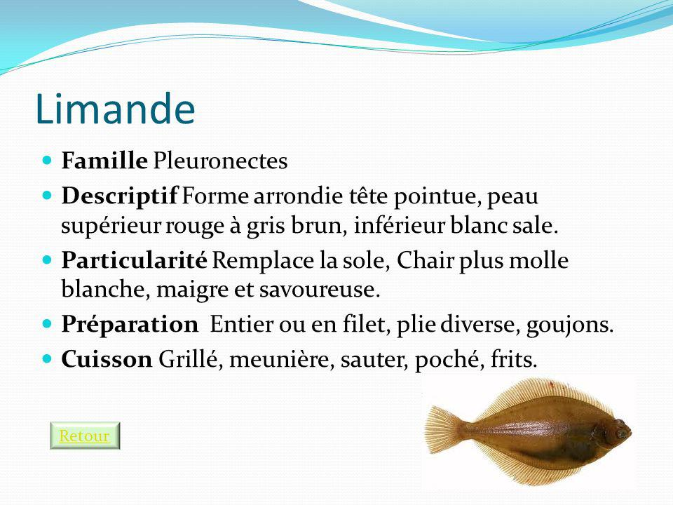 Limande Famille Pleuronectes