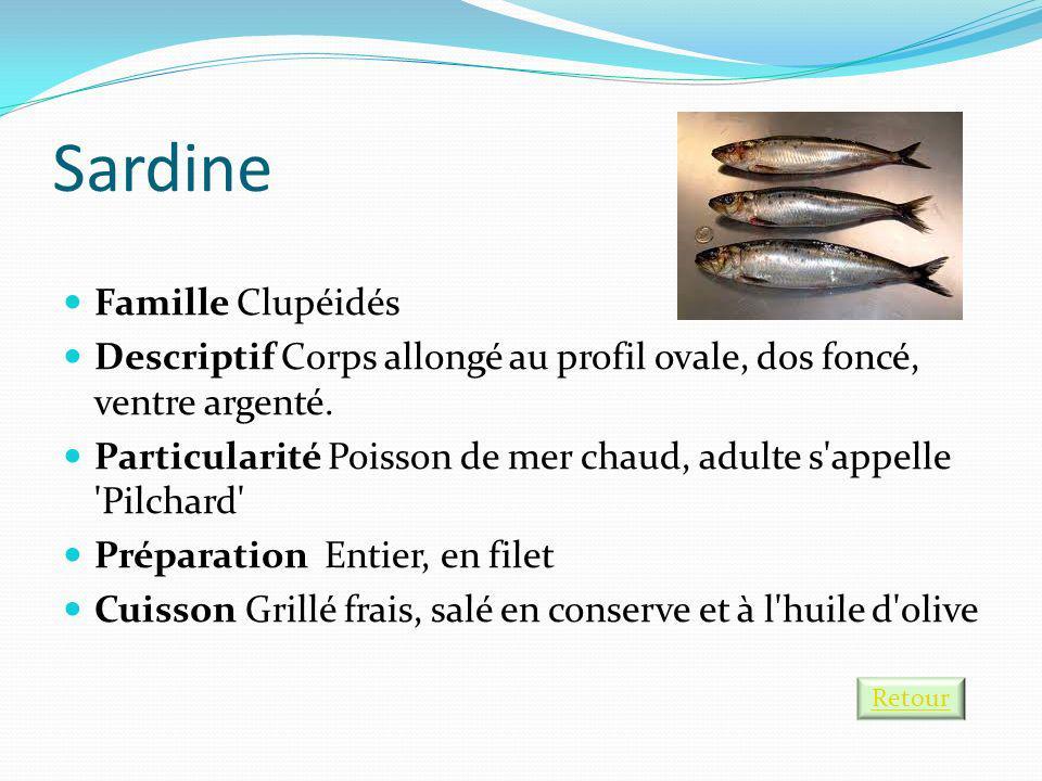 Sardine Famille Clupéidés