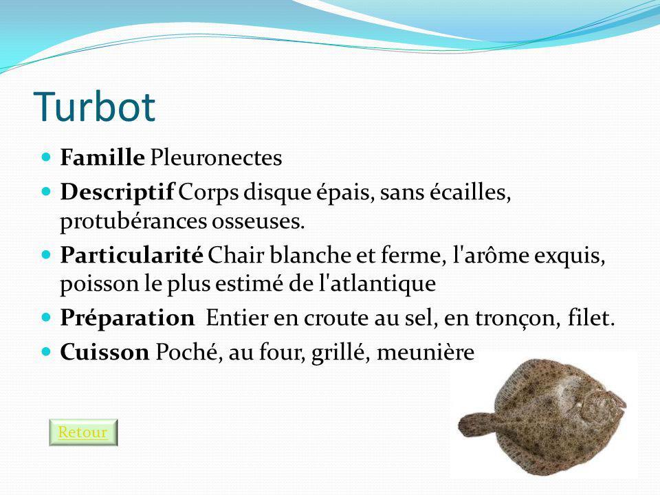 Turbot Famille Pleuronectes
