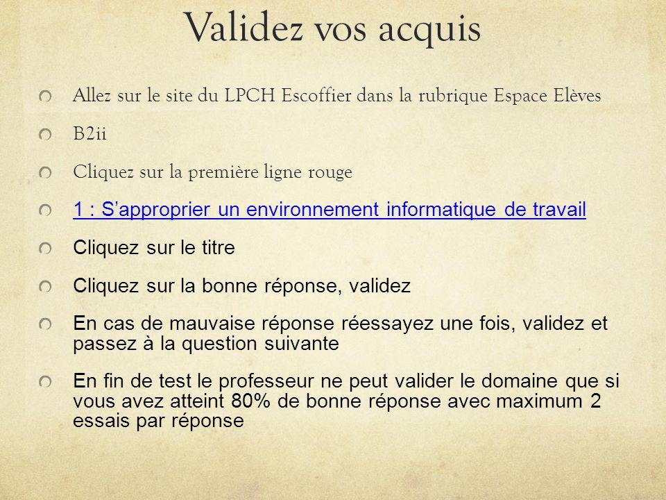 Validez vos acquis Allez sur le site du LPCH Escoffier dans la rubrique Espace Elèves. B2ii. Cliquez sur la première ligne rouge.