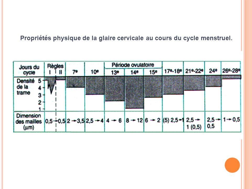Propriétés physique de la glaire cervicale au cours du cycle menstruel.
