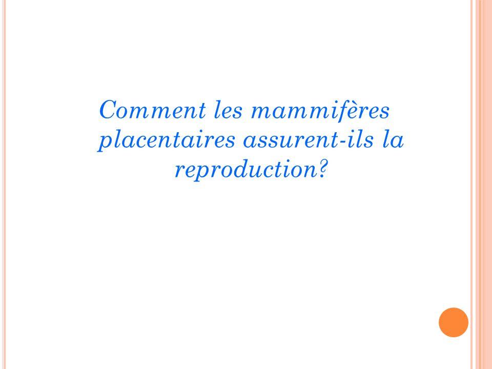 Comment les mammifères placentaires assurent-ils la reproduction