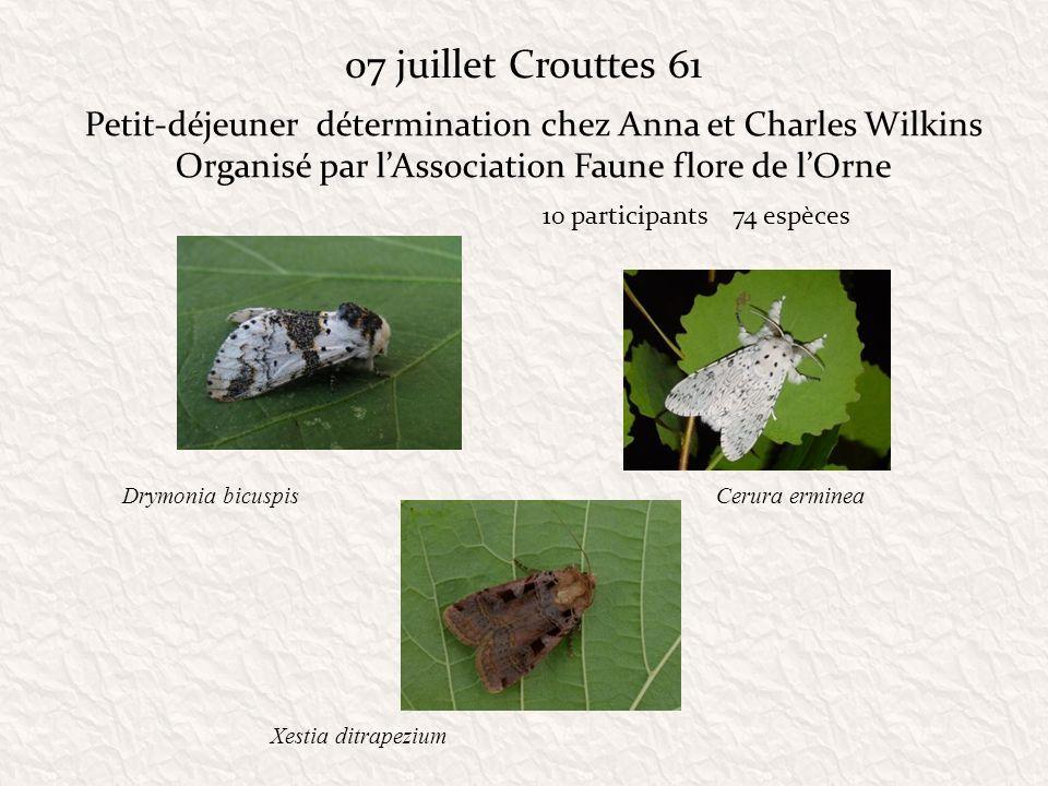 07 juillet Crouttes 61 Petit-déjeuner détermination chez Anna et Charles Wilkins. Organisé par l'Association Faune flore de l'Orne.