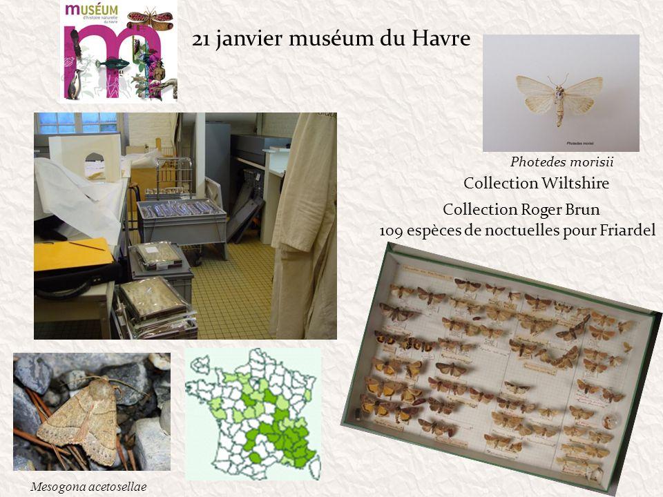 21 janvier muséum du Havre