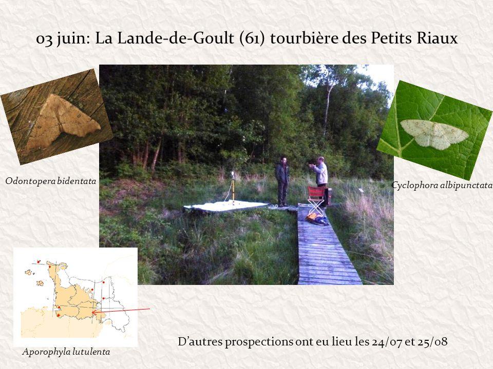 03 juin: La Lande-de-Goult (61) tourbière des Petits Riaux