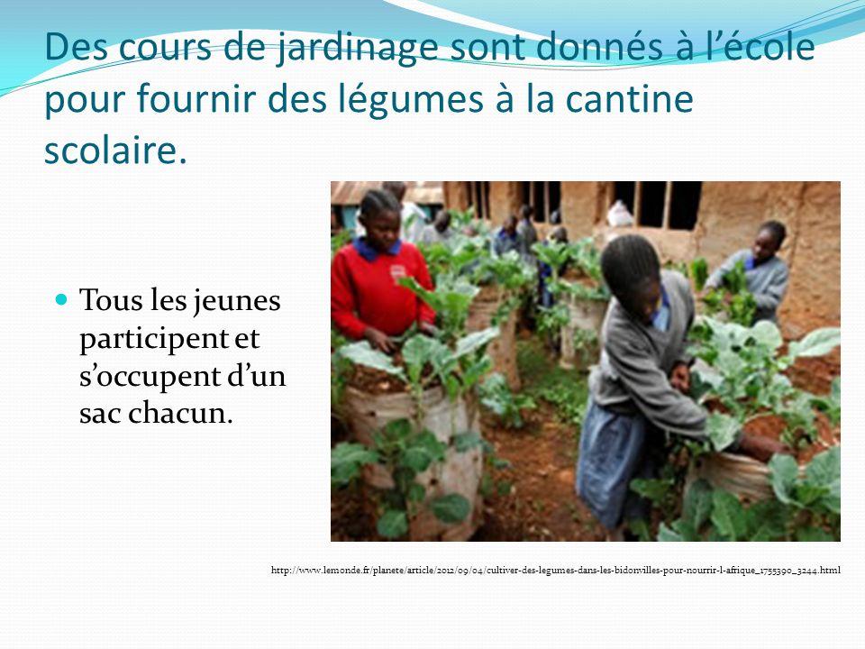 Des cours de jardinage sont donnés à l'école pour fournir des légumes à la cantine scolaire.