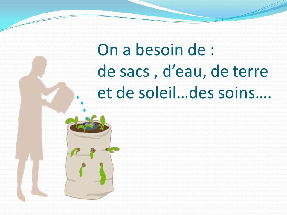 On a besoin de : de sacs , d'eau, de terre et de soleil…des soins….