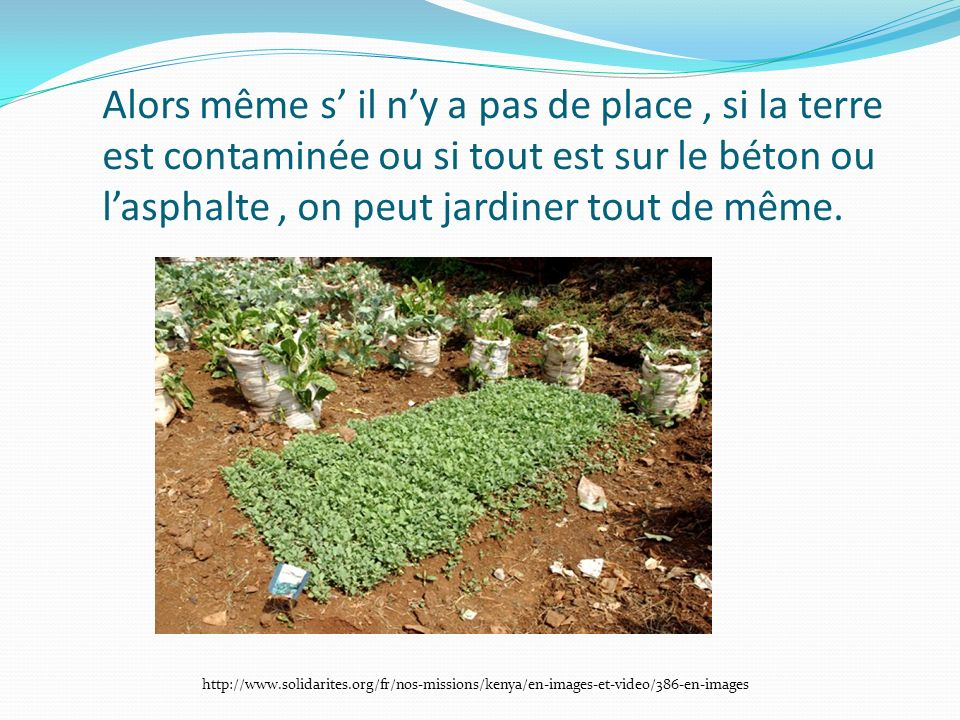 Alors même s' il n'y a pas de place , si la terre est contaminée ou si tout est sur le béton ou l'asphalte , on peut jardiner tout de même.