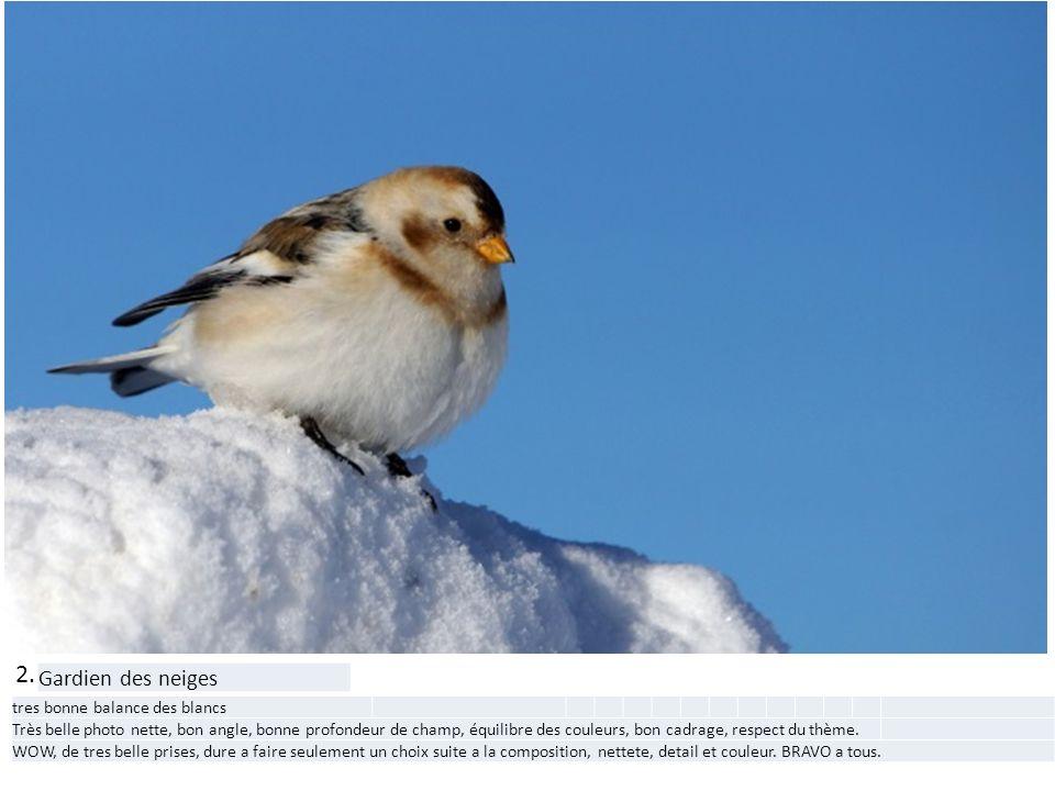 2. Gardien des neiges tres bonne balance des blancs