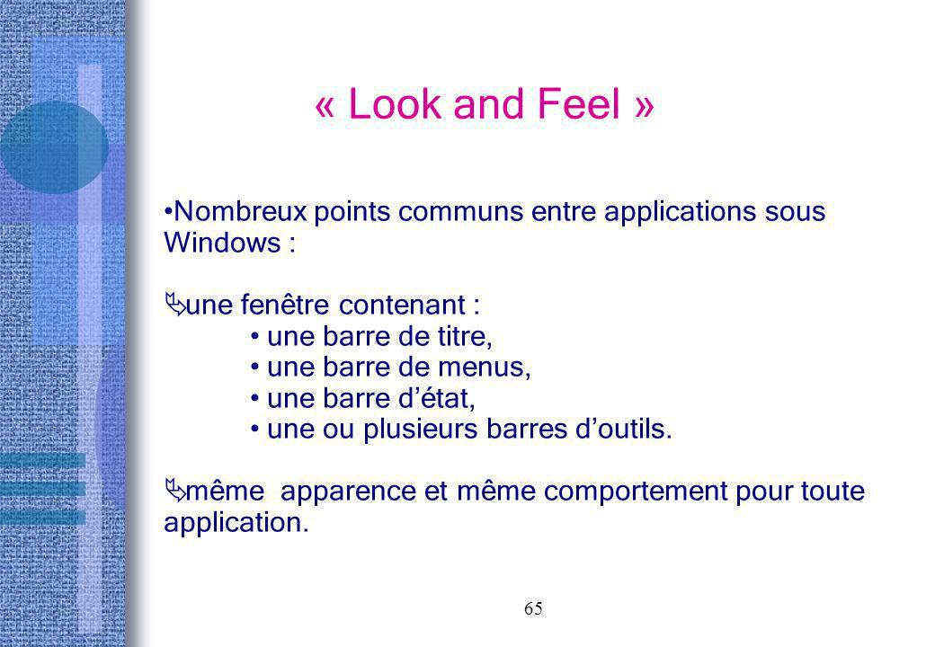 « Look and Feel » Nombreux points communs entre applications sous Windows : une fenêtre contenant :