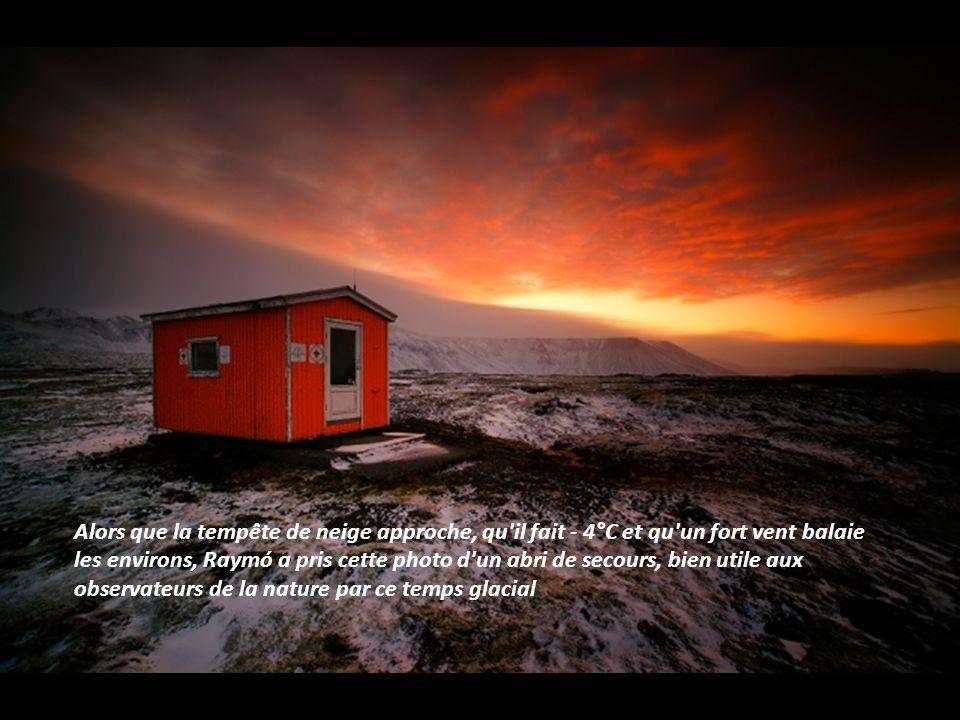 Alors que la tempête de neige approche, qu il fait - 4°C et qu un fort vent balaie les environs, Raymó a pris cette photo d un abri de secours, bien utile aux observateurs de la nature par ce temps glacial