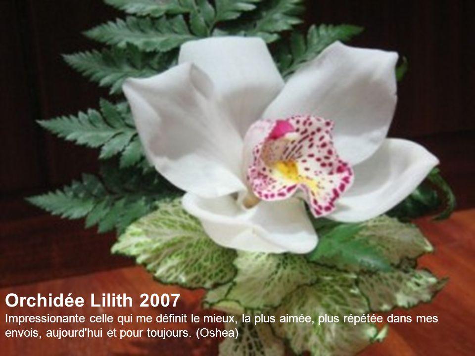 Orchidée Lilith 2007 Impressionante celle qui me définit le mieux, la plus aimée, plus répétée dans mes envois, aujourd hui et pour toujours.