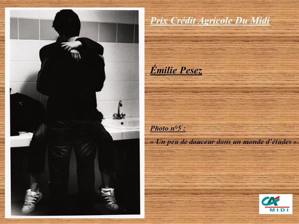 Prix Crédit Agricole Du Midi