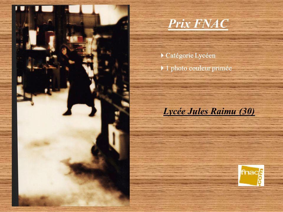 Prix FNAC Lycée Jules Raimu (30) Catégorie Lycéen