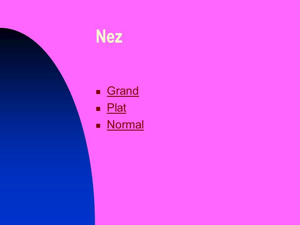 Nez Grand Plat Normal