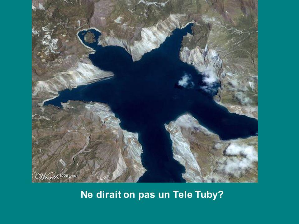 Ne dirait on pas un Tele Tuby