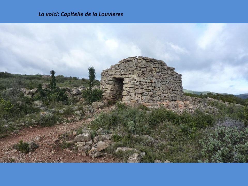 La voici: Capitelle de la Louvieres