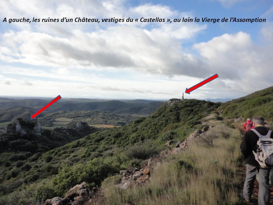 A gauche, les ruines d'un Château, vestiges du « Castellas », au loin la Vierge de l'Assomption