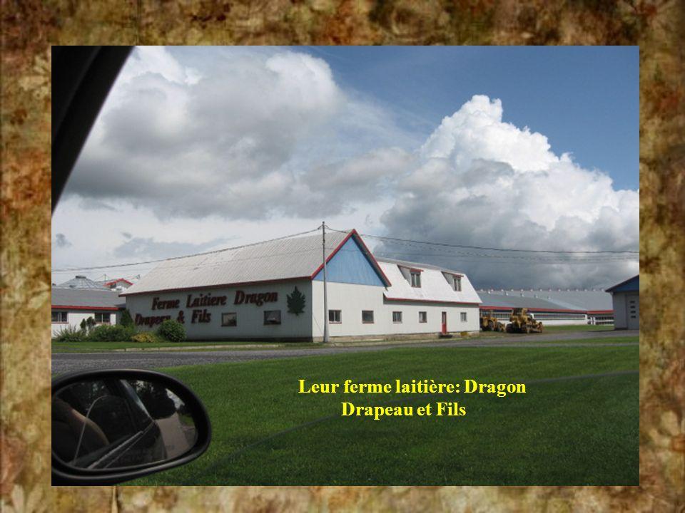Leur ferme laitière: Dragon