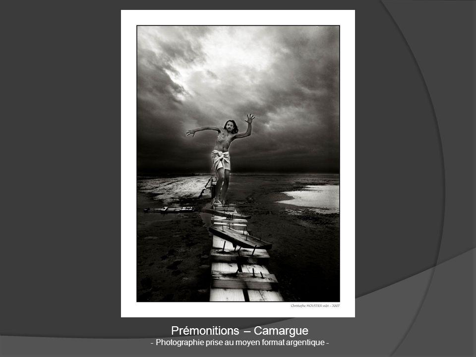 Prémonitions – Camargue