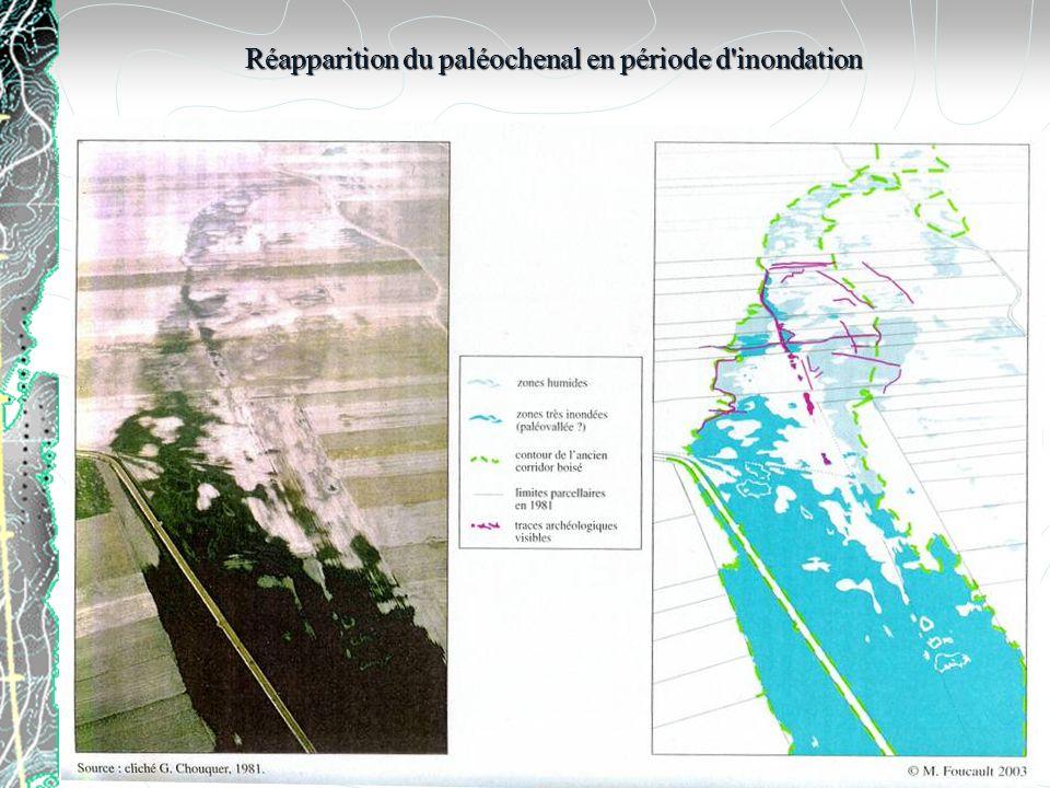 Réapparition du paléochenal en période d inondation