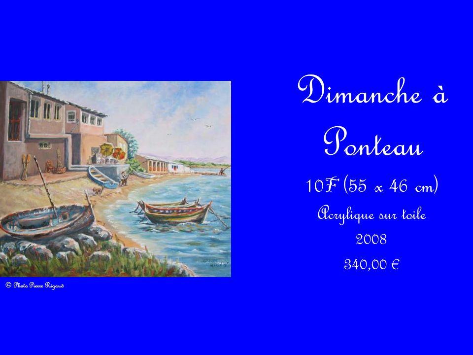 10F (55 x 46 cm) Acrylique sur toile 2008 340,00 €