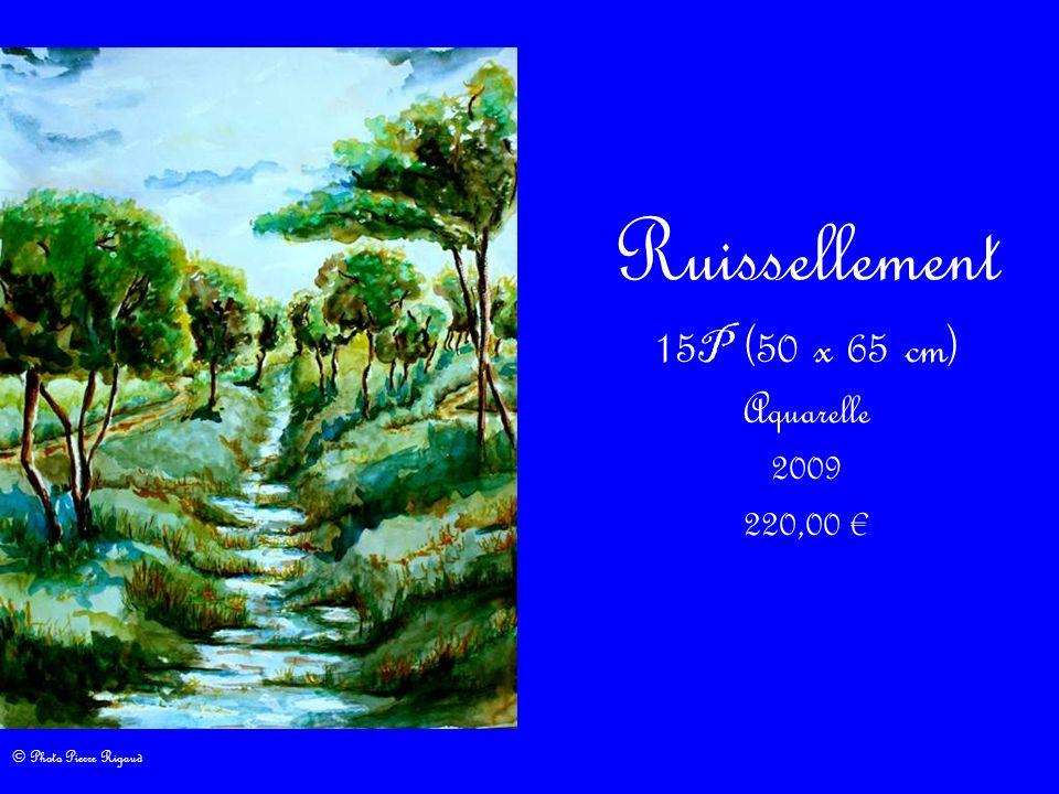 Ruissellement 15P (50 x 65 cm) Aquarelle 2009 220,00 €
