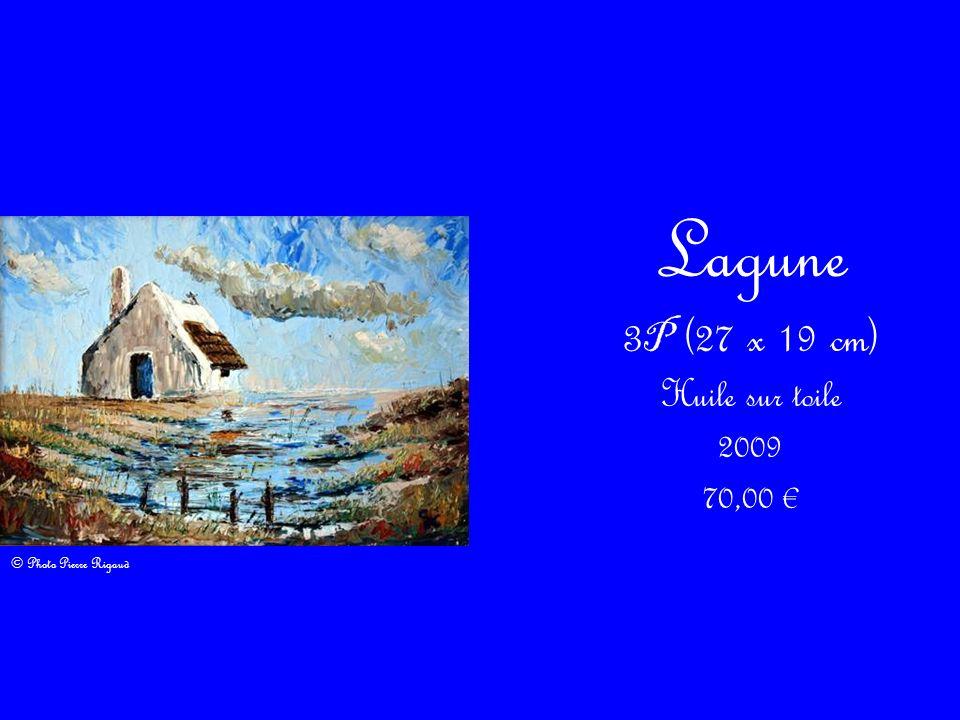 Lagune 3P (27 x 19 cm) Huile sur toile 2009 70,00 €